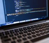 Programador de sitios web